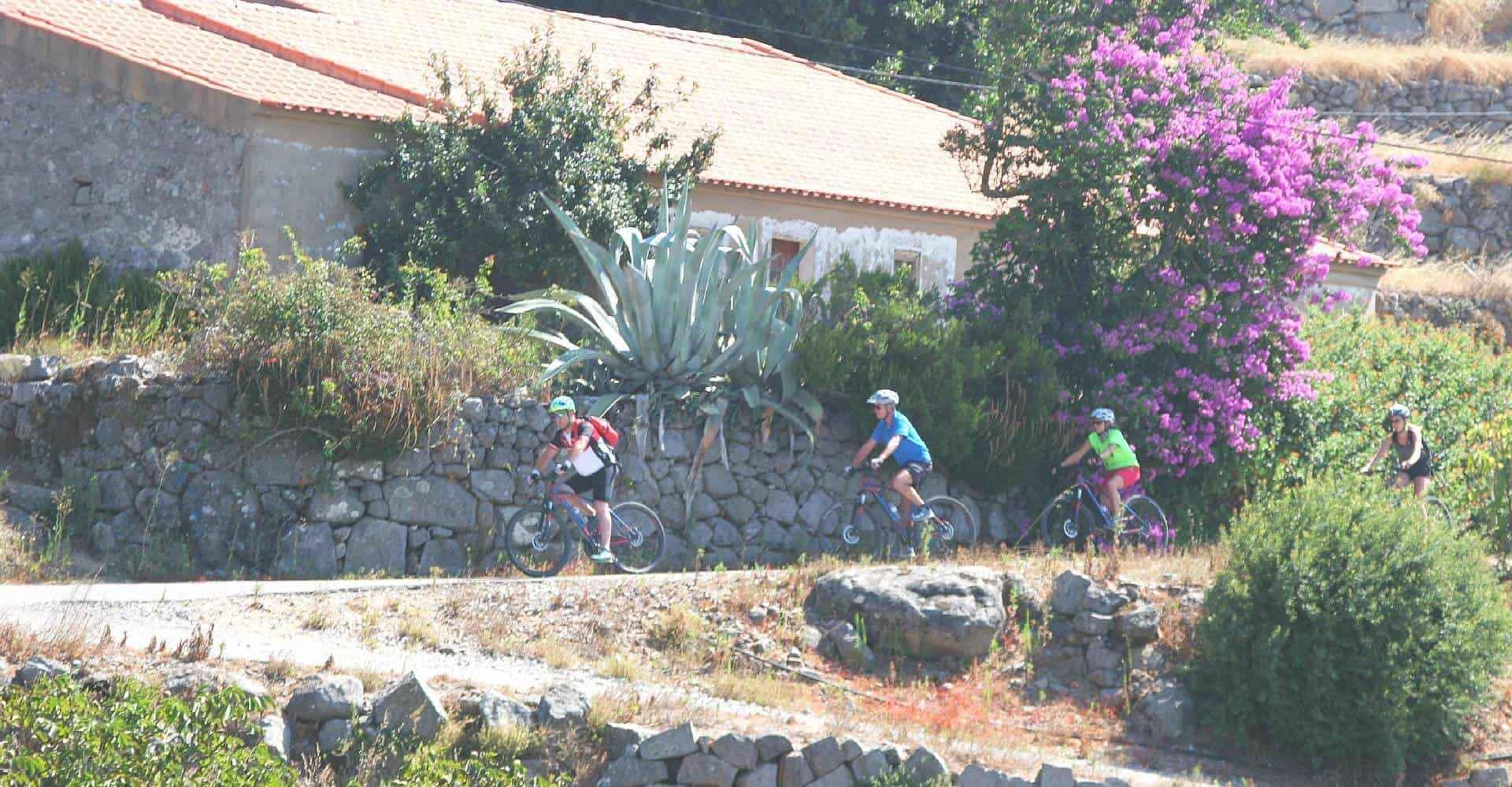 colourful farm with bikes